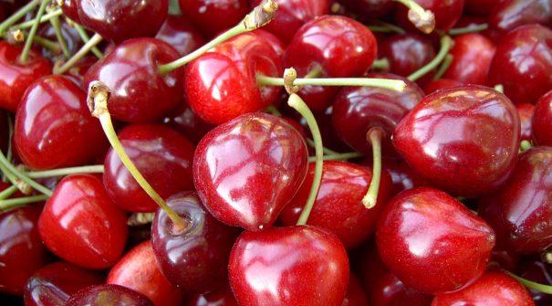 Cerejas são recebidas em Festa nos dias 1 e 2 de junho