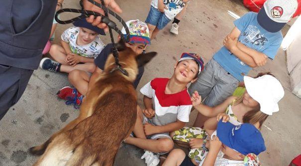Férias na Câmara ocupam crianças durante o verão
