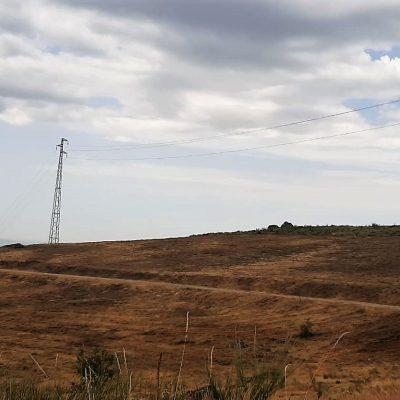 Município promove ações de defesa da floresta contra incêndios